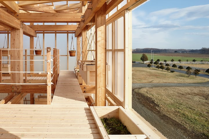 Nest We Grow Timber Structure In The Island of Hokkaido by KK homesthetics (9)