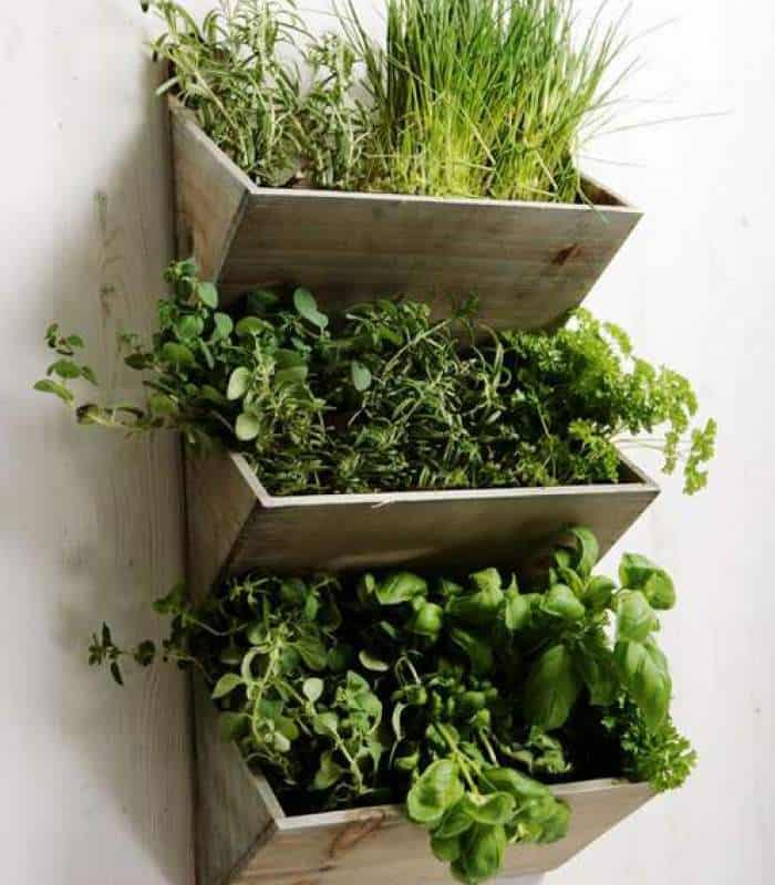 20 Creative Diy Vertical Gardens For Your Home: Welcome Spring With 20 Creative DIY Garden Projects