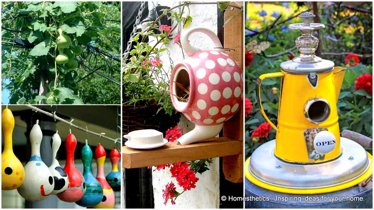 16 simple and ingenious diy birdhouse ideas for your for Ideas for your garden