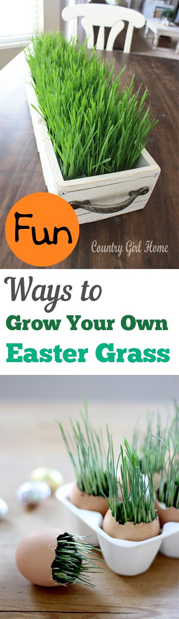 2. grow your own Easter grass