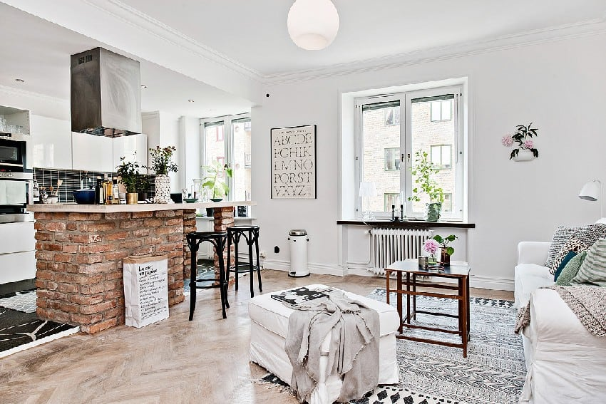 How To Decorate And Organize A One Room Apartment homesthetics (9)