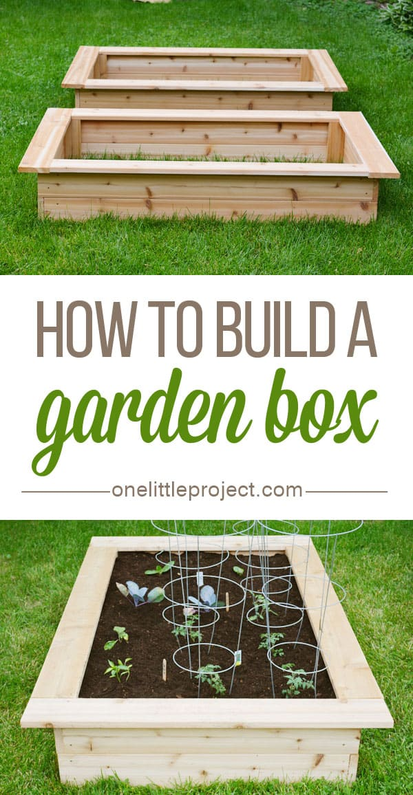 How-to-build-a-garden-box