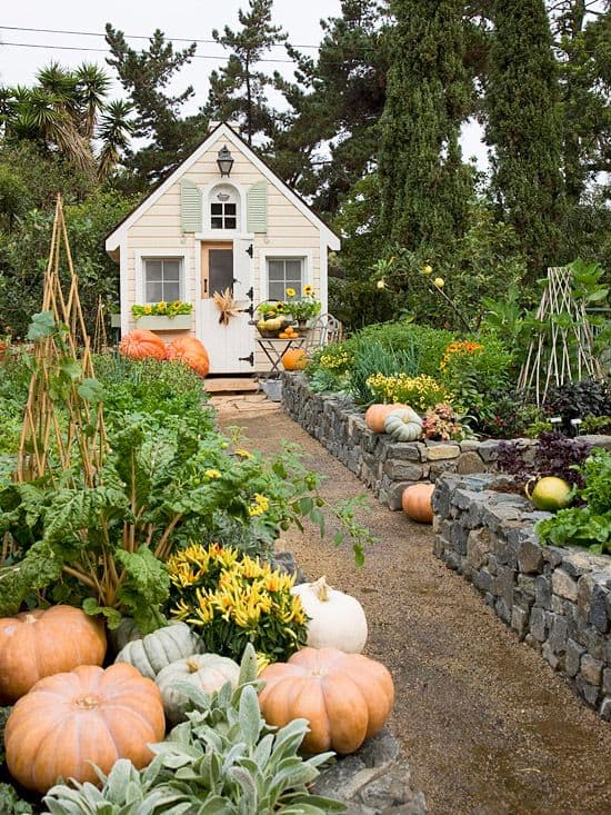 Image result for beautiful raised garden beds