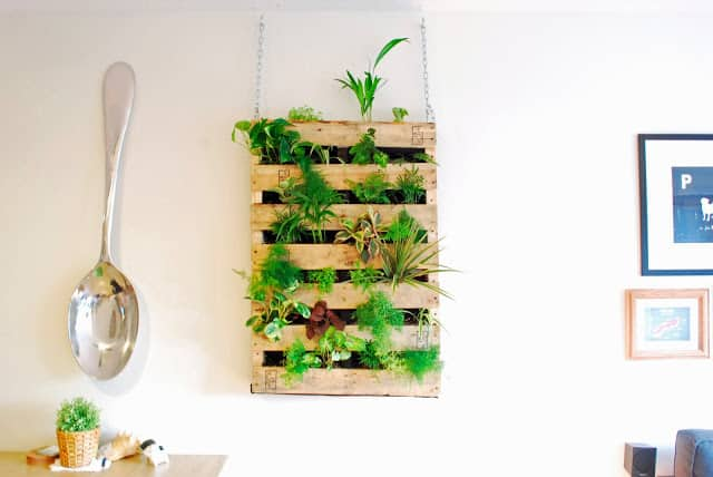 WALL HANGING KITCHEN GARDEN