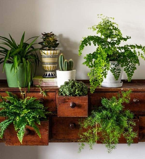 24 of The Most Beautiful Ideas on Indoor Mini Garden to Collect homesthetics (10)