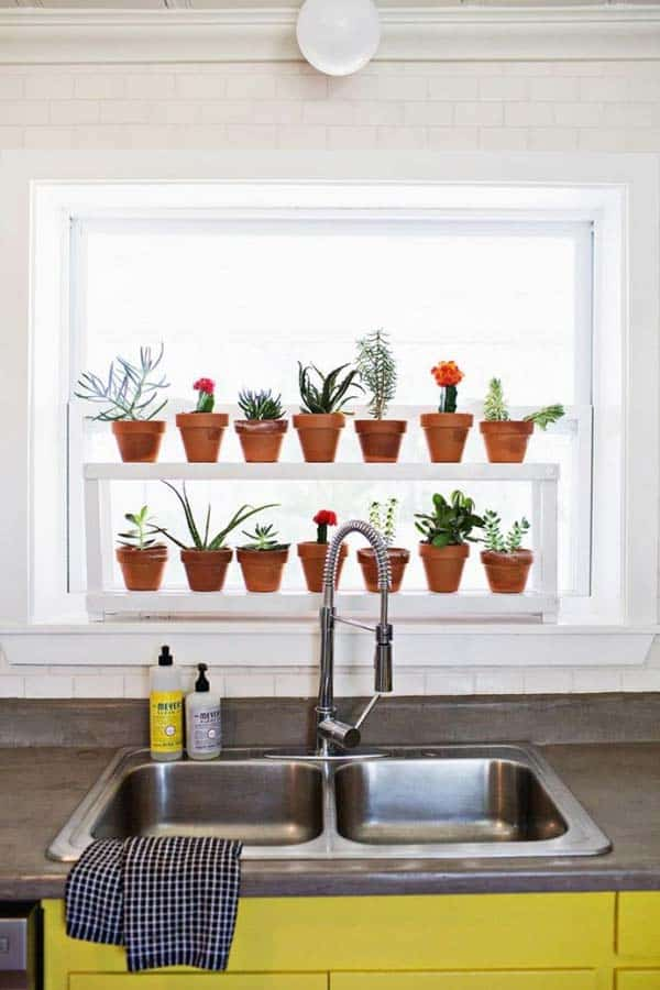 24 of The Most Beautiful Ideas on Indoor Mini Garden to Collect homesthetics (19)