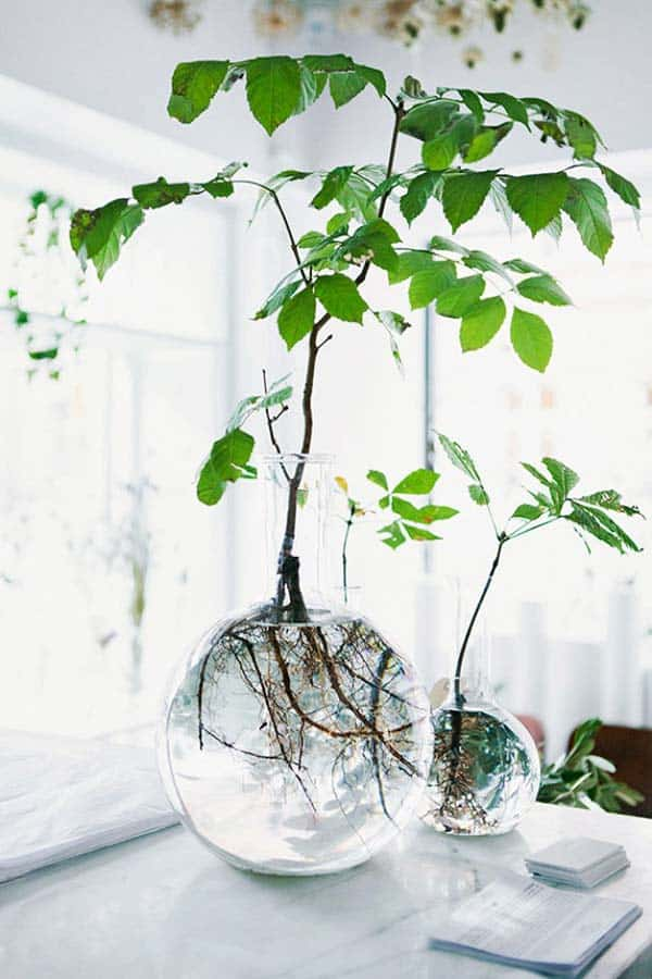 24 of The Most Beautiful Ideas on Indoor Mini Garden to Collect homesthetics (2)