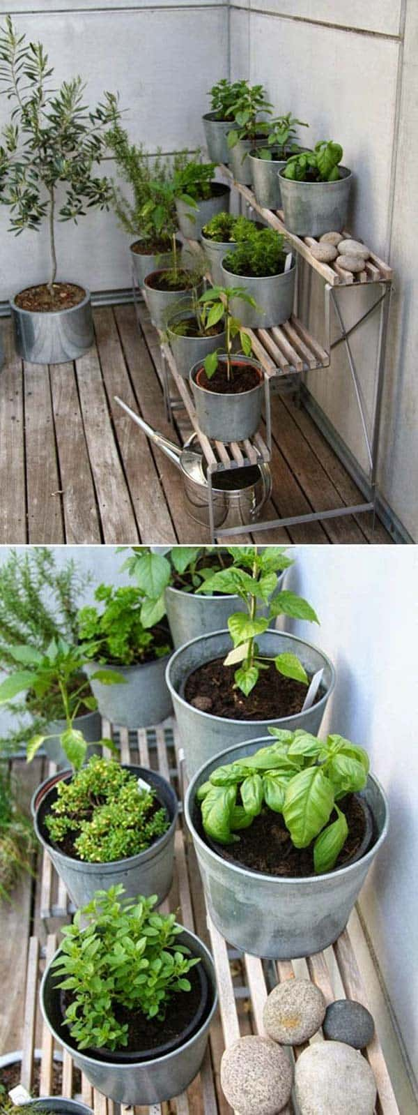 24 of The Most Beautiful Ideas on Indoor Mini Garden to Collect homesthetics (20)