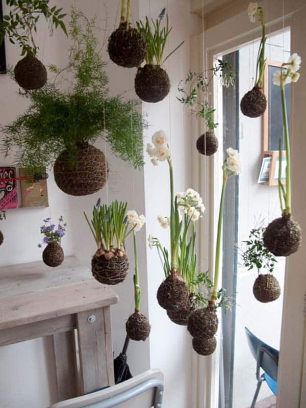 24 of the most beautiful ideas on indoor mini garden to for Indoor greenery ideas