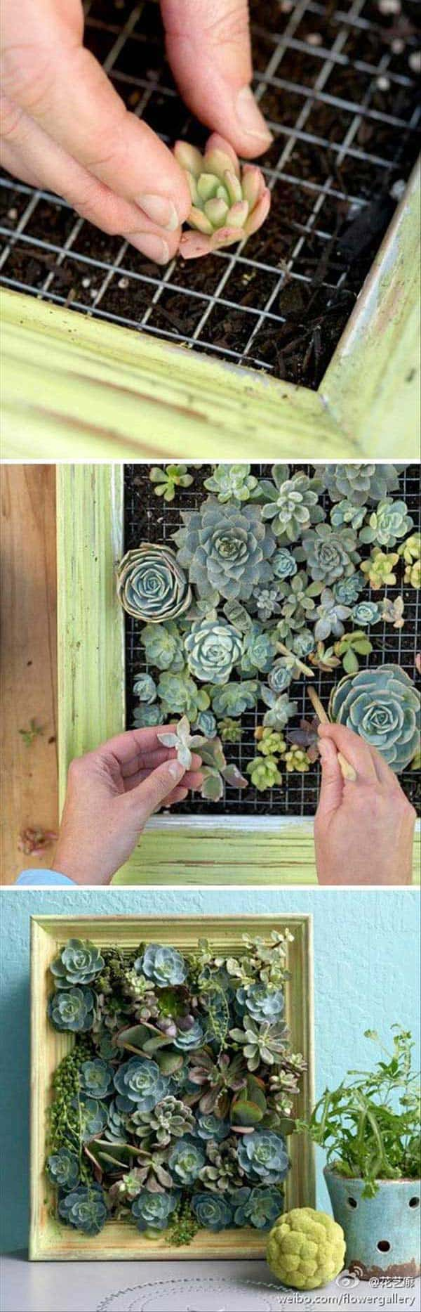 24 of The Most Beautiful Ideas on Indoor Mini Garden to Collect homesthetics (7)