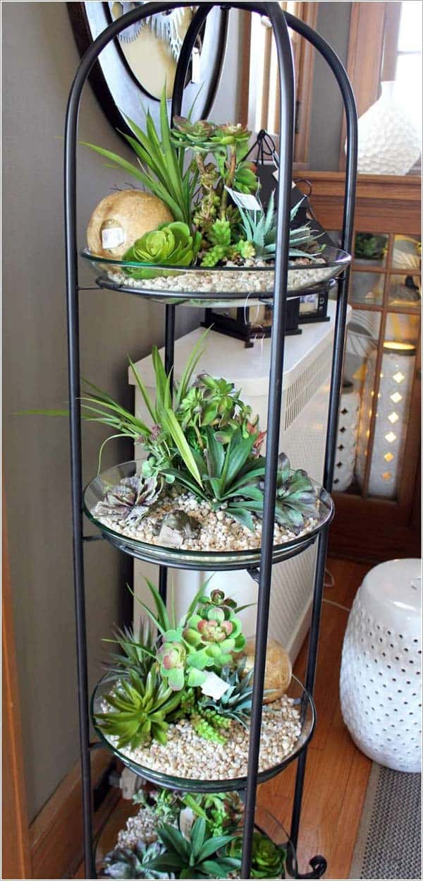 24 of The Most Beautiful Ideas on Indoor Mini Garden to Collect homesthetics (9)