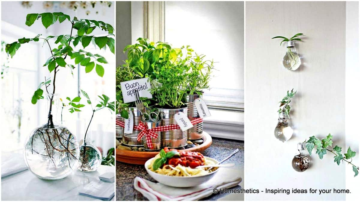 24 of The Most Beautiful Ideas on Indoor Mini Garden to Collect | Homesthetics - Inspiring ideas for your home.