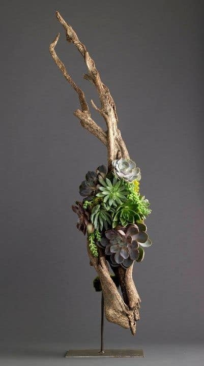 Gorgeous Succulent Planters Instantly Beautifying Your Home-homesthetics (19)