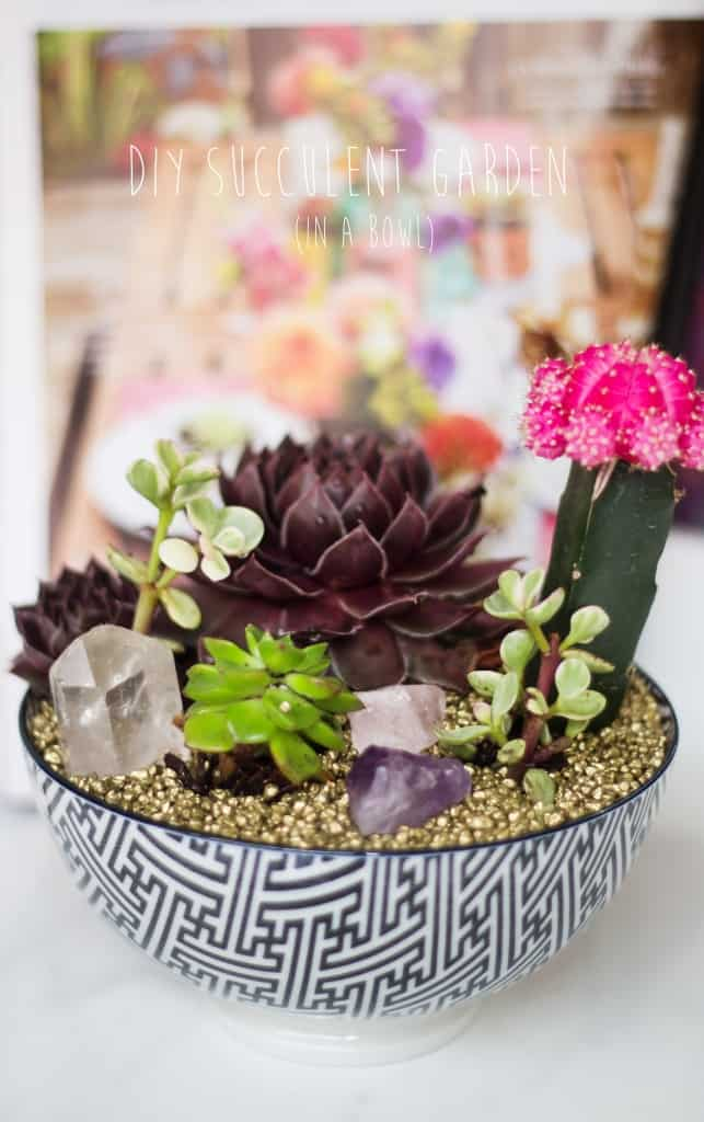 Gorgeous Succulent Planters Instantly Beautifying Your Home-homesthetics (20)
