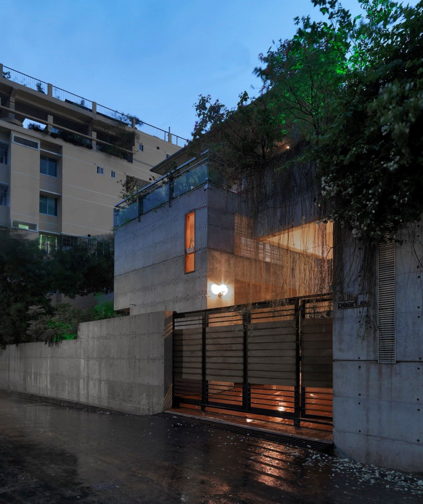 Exposed-Concrete-Home-Enhanced-by-Lush-Vegetation-Shatotto-Architecture-homesthetics-11
