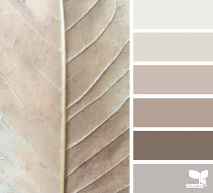 taupe color mood board inspiration