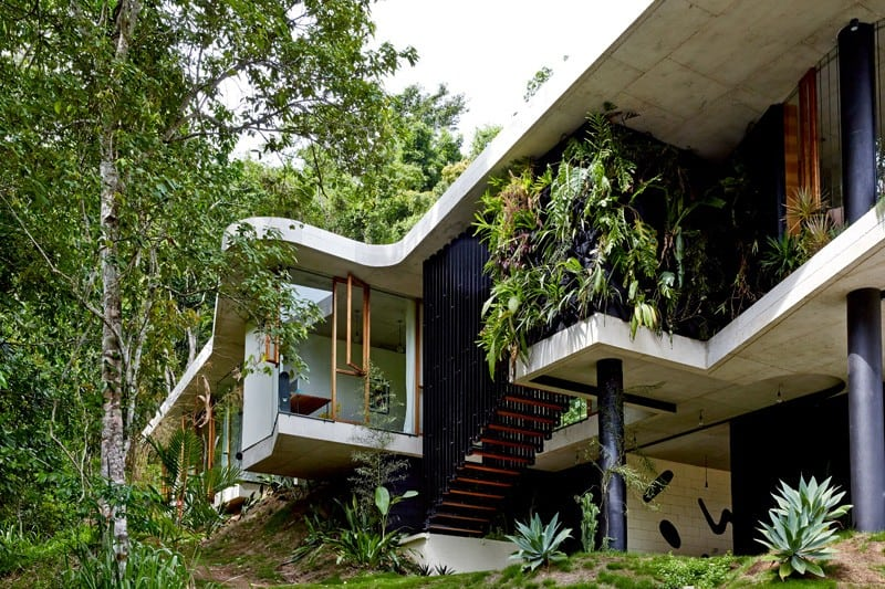 Tropical-Planchonella-House-in-Australia-Defined-by-Sculptural-Concrete-homesthetics-2