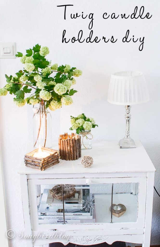 Adorne Your Home With DIY Twig Decorations-homesthetics (7)