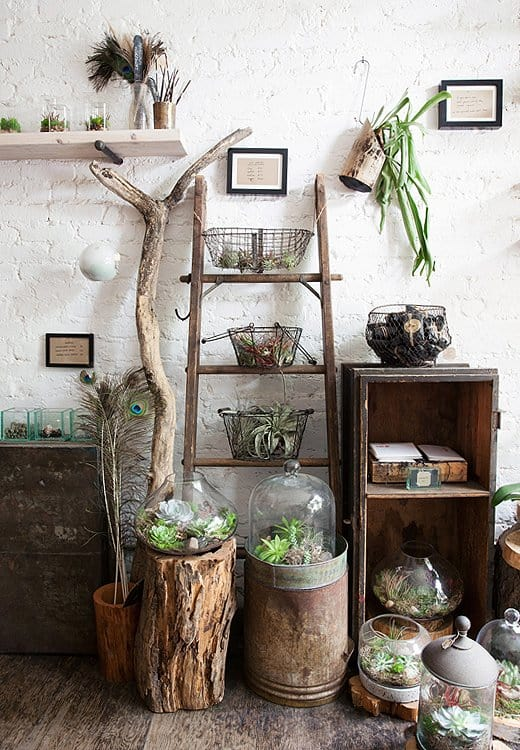 Fresh Interior Designs Fit For Plant Enthusiasts-homesthetics (13)