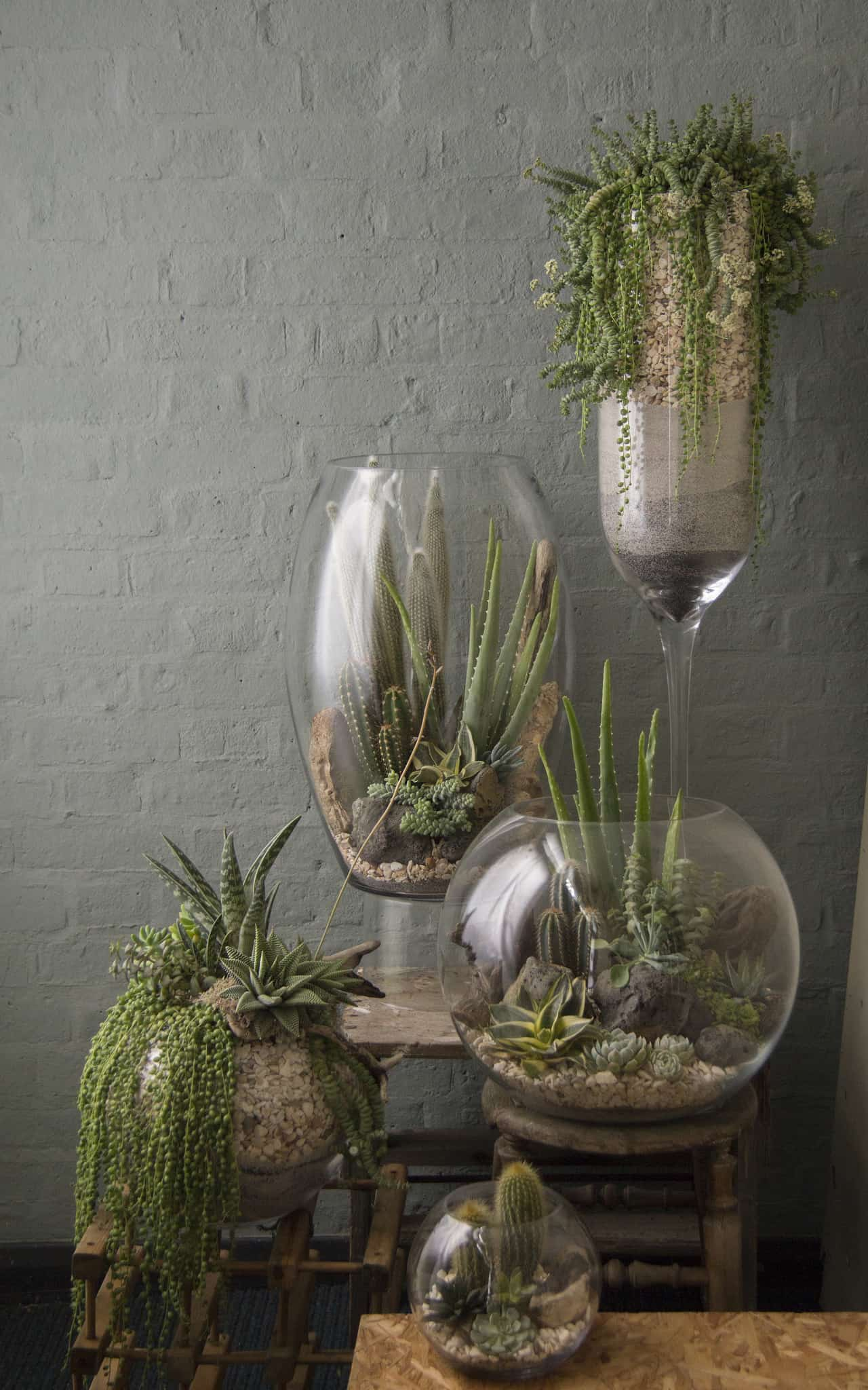 Fresh Interior Green Corners Fit For Plant Enthusiasts ...