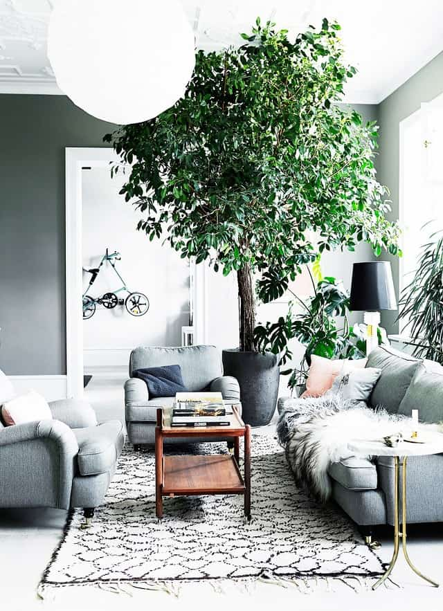 Fresh Interior green corner