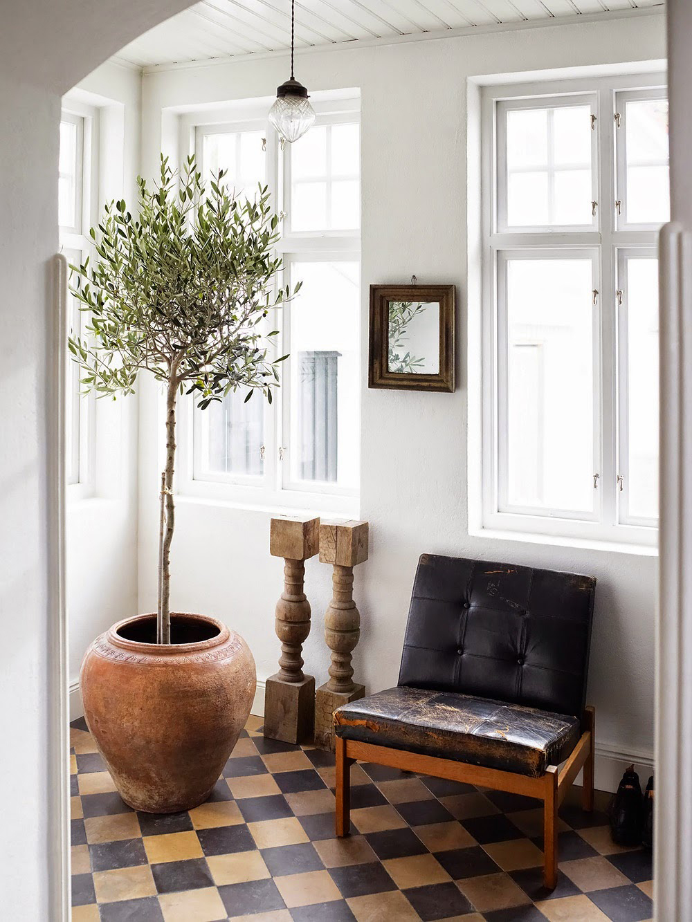 Mediterranean vibe brought in a home through an olive tree