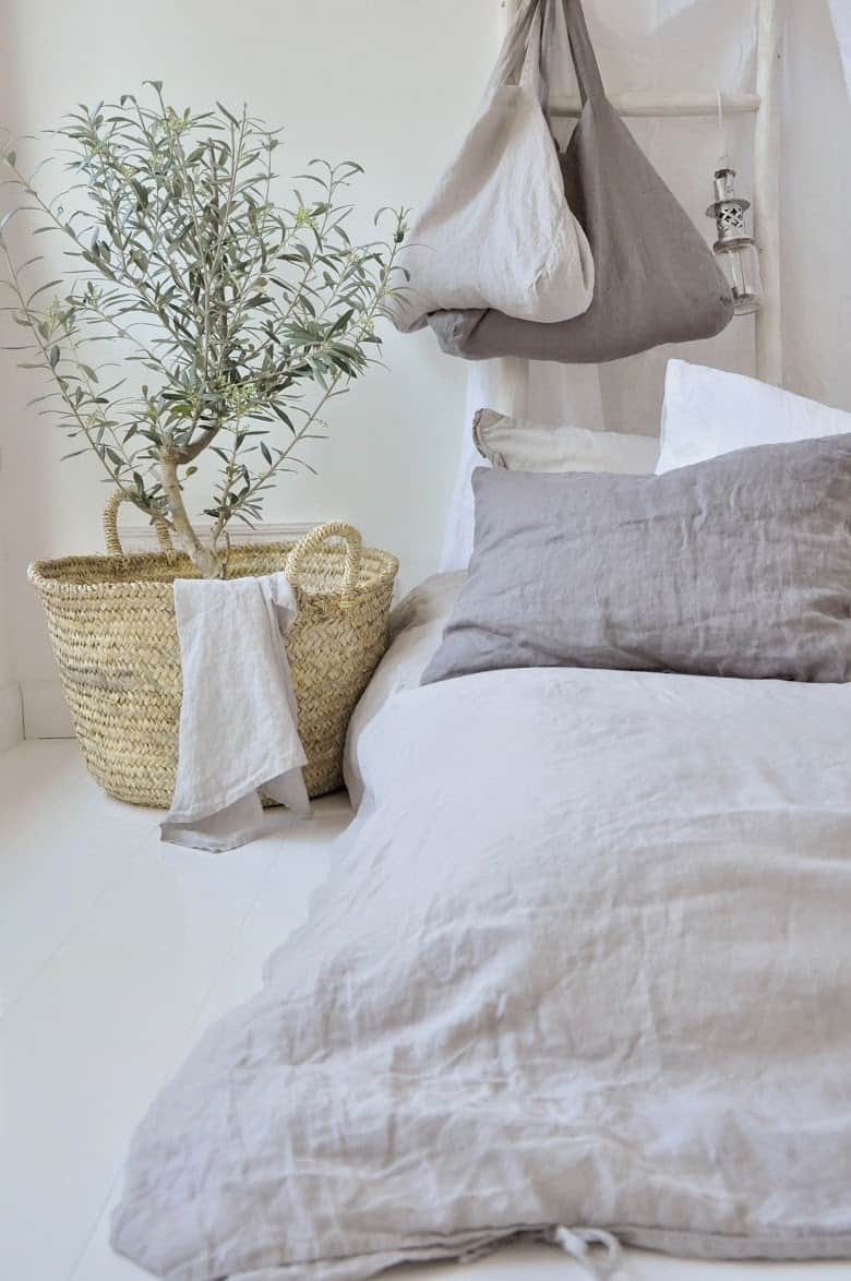 n olive tree placed near your bed