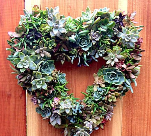 15 Spectacular Succulent Wreaths and Monograms That Will Transform Your Porch (1)