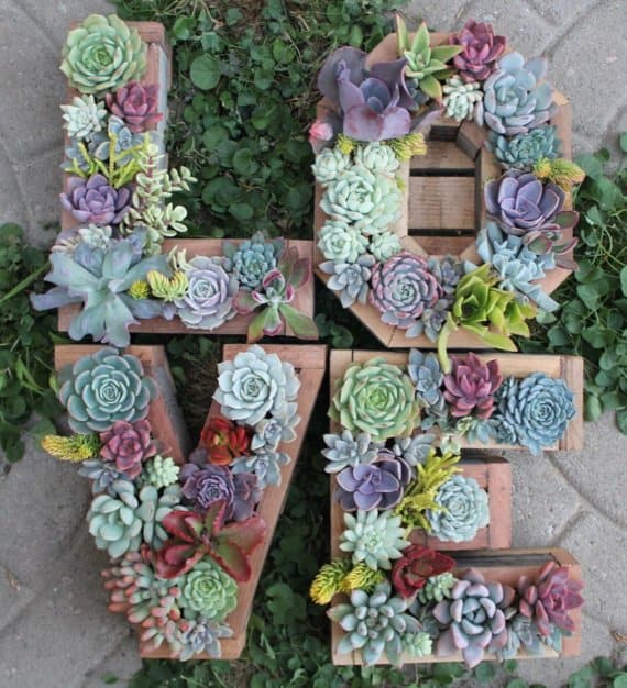 15 Spectacular Succulent Wreaths and Monograms That Will Transform Your Porch (10)
