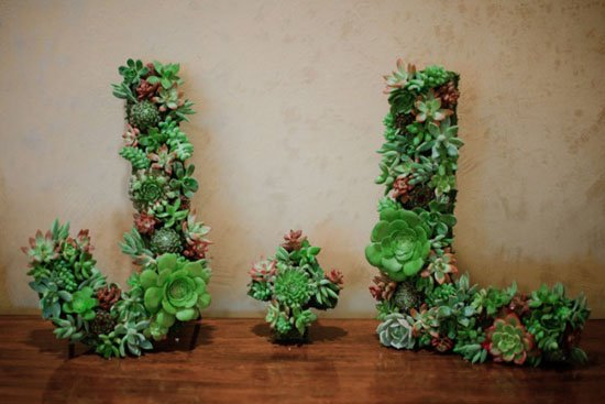 15 Spectacular Succulent Wreaths and Monograms That Will Transform Your Porch (15)