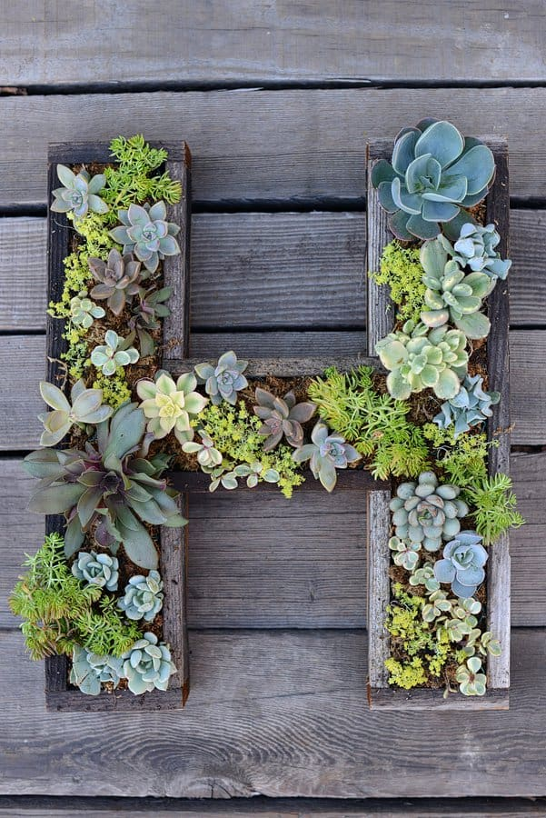 15 Spectacular Succulent Wreaths and Monograms That Will Transform Your Porch (8)