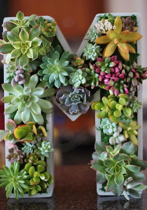15 Spectacular Succulent Wreaths and Monograms That Will Transform Your Porch (9)