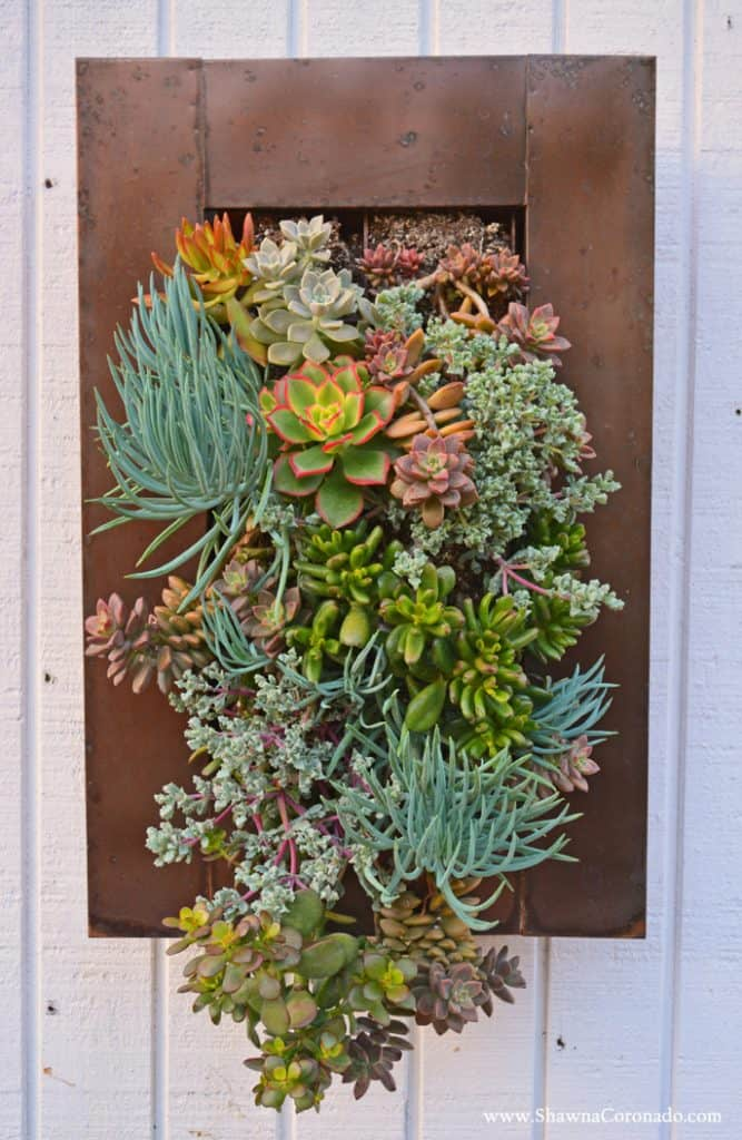 16 Splendid Succulent Planter Frames to Beautify Your Home (12)