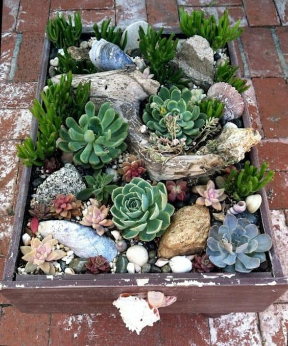 16 Splendid Succulent Planter Frames to Beautify Your Home (14)