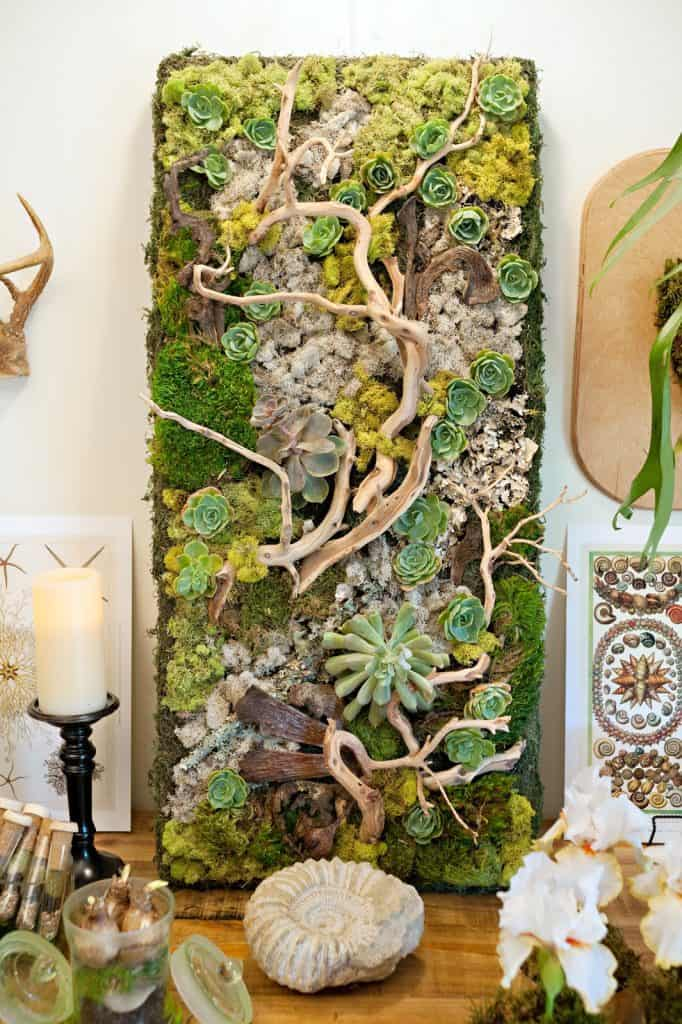 16 Splendid Succulent Planter Frames to Beautify Your Home (15)