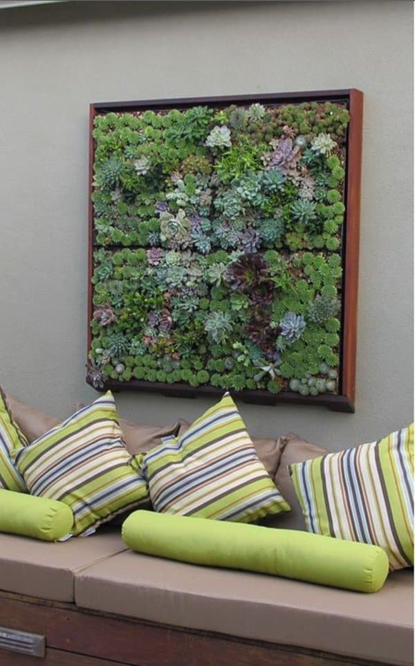 16 Splendid Succulent Planter Frames to Beautify Your Home (3)