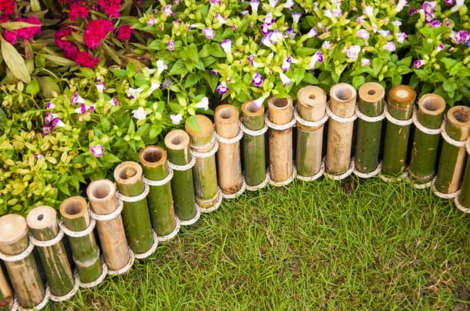 19.-bamboo-fence-680x450