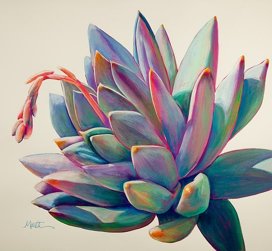 19. COLORFUL FUN TOUCHES DEPICTING A SUCCULENT PLANT