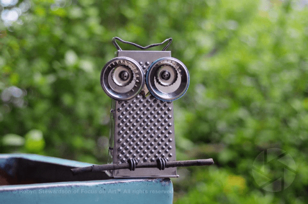 Cheese-Grater-owl