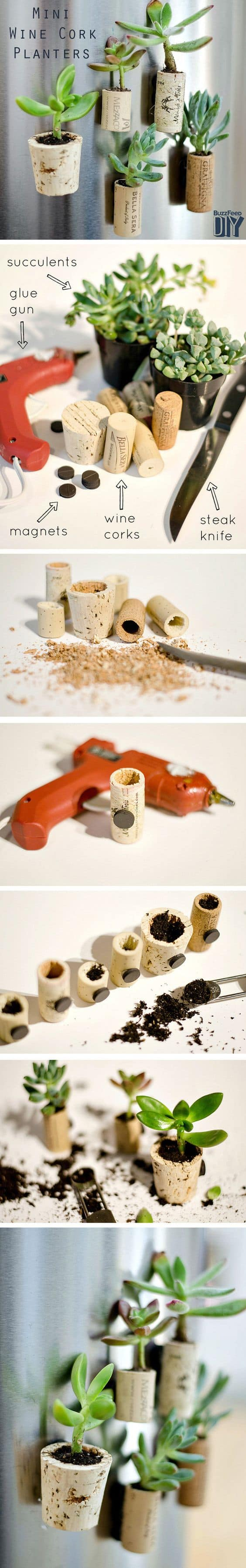 Ingenious Wine Cork Planters For Your Little Plants (1)
