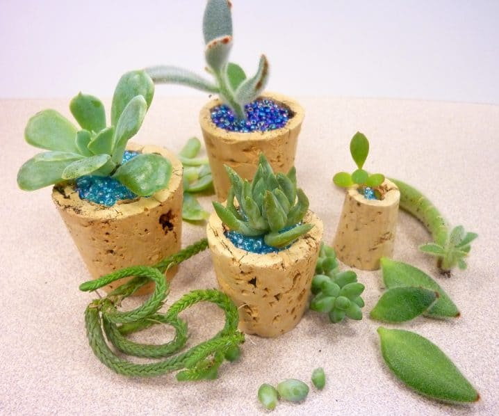 Ingenious Wine Cork Planters For Your Little Plants (13)