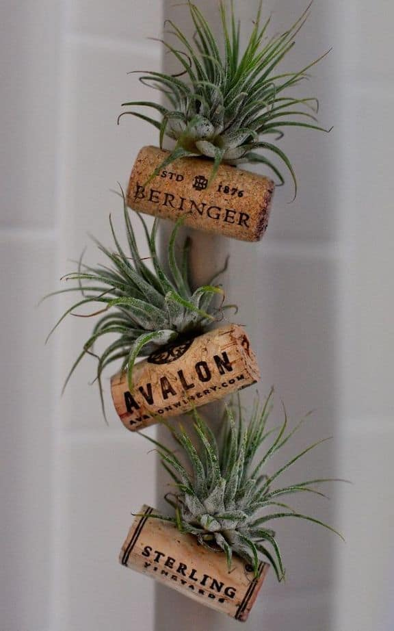 Ingenious Wine Cork Planters For Your Little Plants (3)
