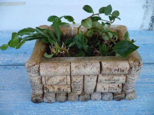 Ingenious Wine Cork Planters For Your Little Plants (4)