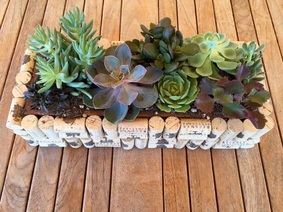 Ingenious Wine Cork Planters For Your Little Plants (5)