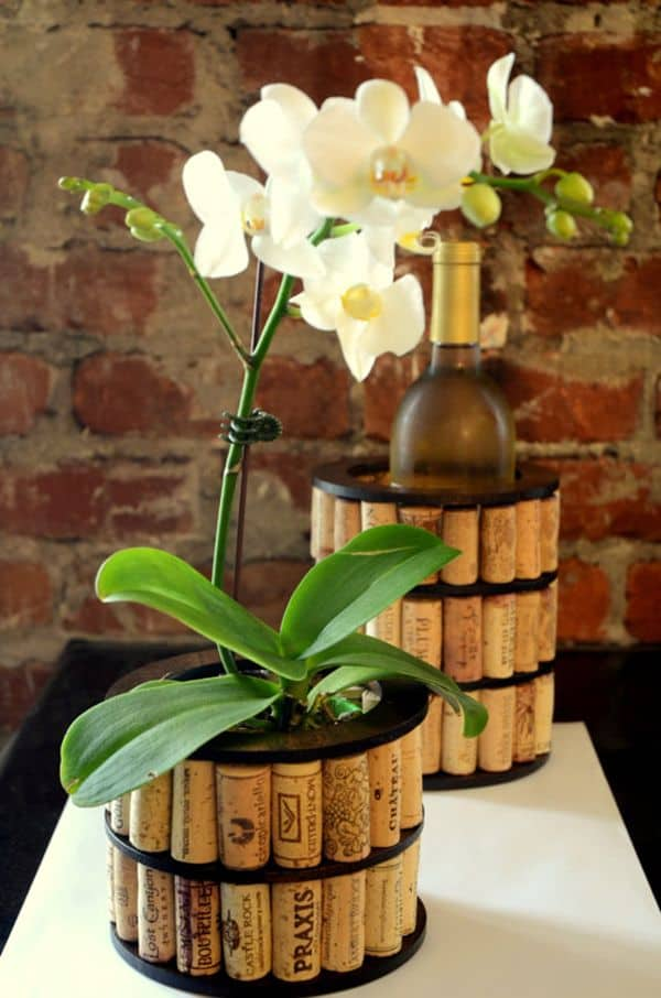 Ingenious Wine Cork Planters For Your Little Plants (7)
