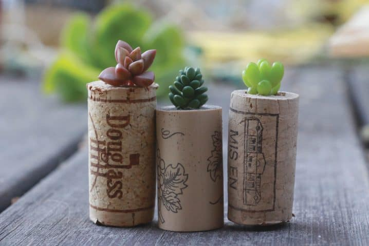 Ingenious Wine Cork Planters For Your Little Plants (9)