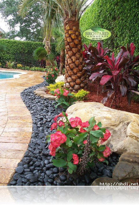 Rock Garden Ideas To Implement In Your Backyard ... on Backyard Rocks  id=68299