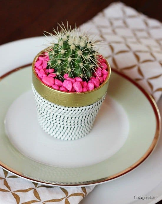 selection-of-splendid-99-cacti-in-diy-flower-pots-4