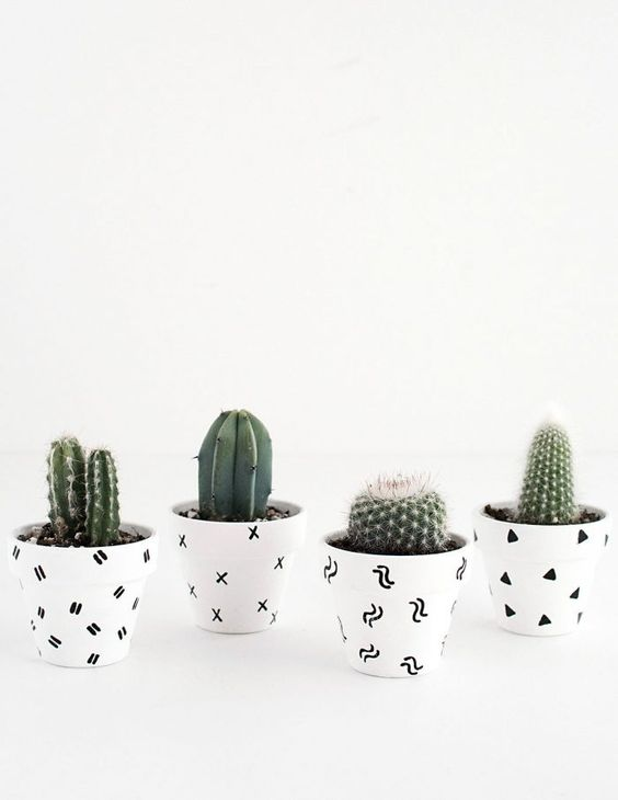 selection-of-splendid-99-cacti-in-diy-flower-pots-5