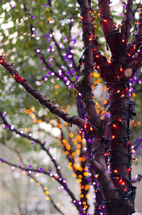 tree-lights